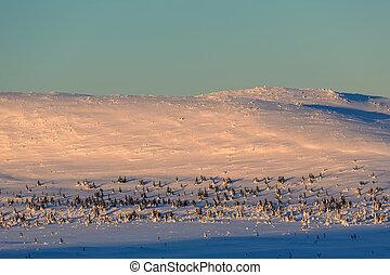 tél, hegyek