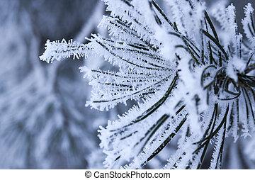 tél időmérés