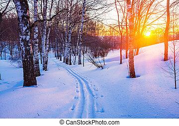 tél, napnyugta