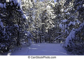 tél táj