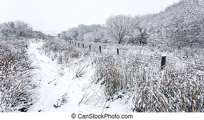 tél, vidéki táj, színhely