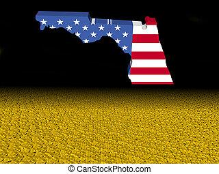 térkép, előtér, florida, érmek, dollár, ábra, lobogó