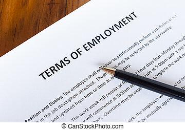 términos, empleo