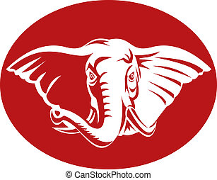 tête, éléphant, africaine