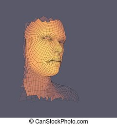 tête, 3d, personne, humain, head., grid., vue