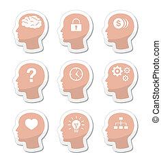 tête, cerveau, vecteur, étiquettes, ensemble