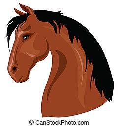 tête, cheval brun