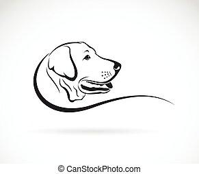 tête, labrador, image, chien, vecteur, fond, blanc
