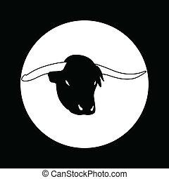 tête, taureau