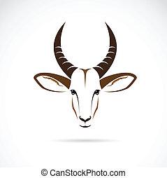 tête, vecteur, cerf, image, (impala)