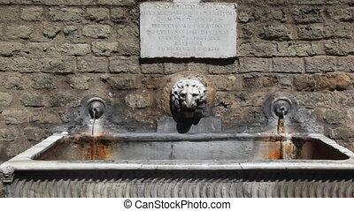 tête, vieux, centre, deux, source eau, lion