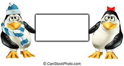 tímido, pingüinos, tenencia, señal