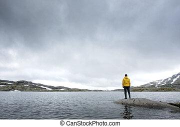 típico, norueguês, paisagem, com, claro, lago