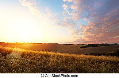 típico, tuscany, landscape;, pôr do sol, sobre, colinas rolantes
