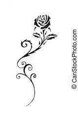 t�towierung, skizze, schwarz, kunst, rose
