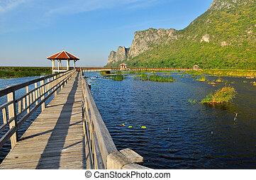 tó, erdő, liget, bridzs, nemzeti