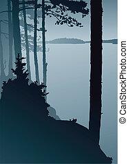 tó, figyelés