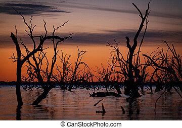 tó, pamamaroo, alatt, outback, napnyugta