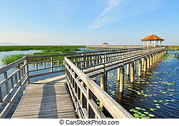 tó, sétány, liget, bridzs, nemzeti