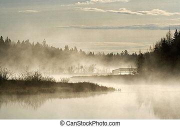 tôt, brouillard, matin