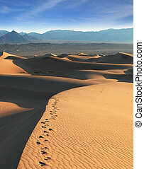 tôt, désert, matin