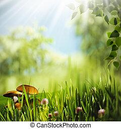 tôt, naturel, résumé, arrière-plans, matin, forest., conception, ton