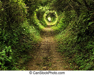 túnel, encantado, arborize caminho