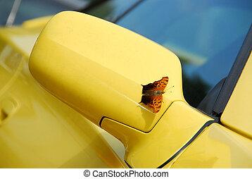 tükör, közül, sárga, sportkocsi