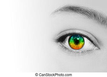 tęcza, oko, perspektywa, widzenie