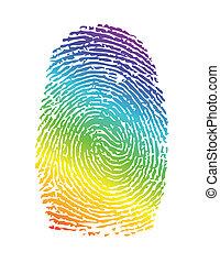tęcza, thumbprint., duma, ilustracja, odcisk palca