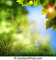 tła, lato, bokeh, naturalne piękno