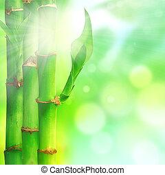 tła, liście, kasownik, bambus, zen
