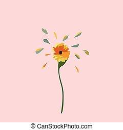 tło, żółty kwiat, różowy