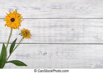 tło., biały kwiat, żółty