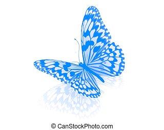 tło., biały, odizolowany, butterfly.