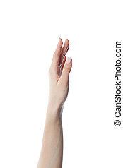 tło, do góry, odizolowany, ręka, samica, biały
