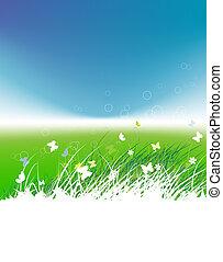 tło, lato, zielone pole, motyle