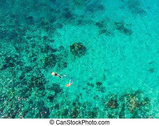 tło, morze, prospekt oceanu, błękitny, antena, para, koral, snorkeling, górny