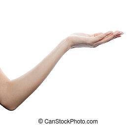 tło, odizolowany, ręka, samica, biały, opróżniać