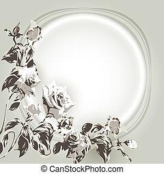 tło, róże, biały