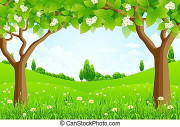 tło, zielone drzewa