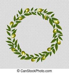 tło, zielony, przeźroczysty, wieniec, odizolowany, oliwka