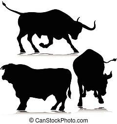 tři, býk, vektor, silhouettes