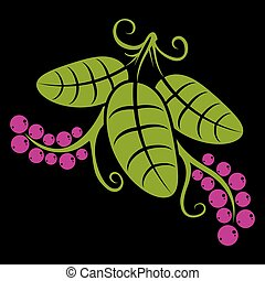 tři, pramen, nebo, léto, list, jednoduchý, vektor, ikona, druh, a, zahradničení, námět, illustration., stylizovaný, strom, mladický list, s, úponka, a, nach, semena, botanika, a, vegetarián, design, element.