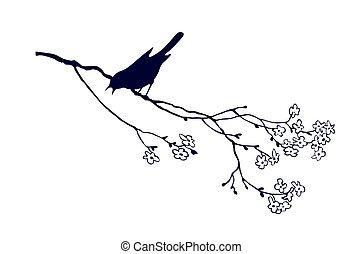 t, 鳥, ブランチ, シルエット