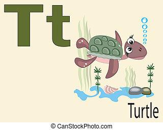 t, alphabet, animal