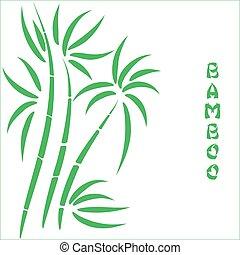 t, bambou, vert