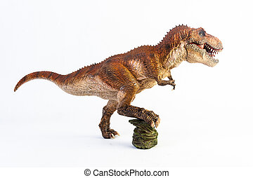 t-rex, 背景, 白, tyrannosaurus