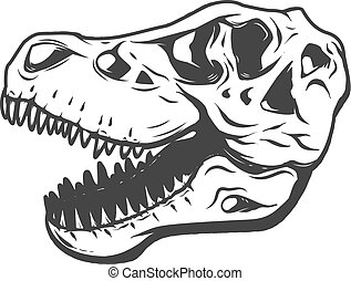 t-rex dinosaur skull isolated on white background. Images for lo