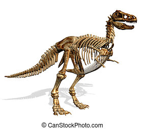 T-Rex Skeleton with Blank Sign